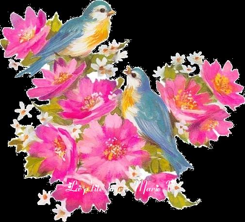 oiseaux-marie-v-4407e36.png